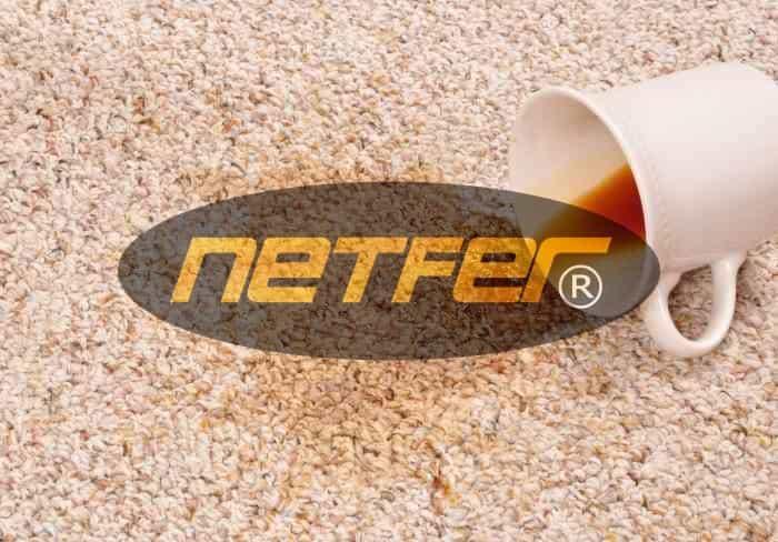 Netfer leke çıkarıcı detay temizleyici